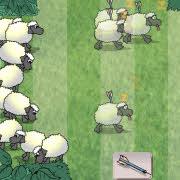 Sheep Reaction Test